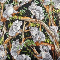 Koalas :  : Multi : NUTEX : 100% Cotton :